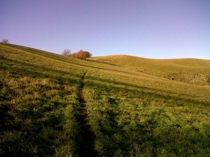 Il sentiero lungo i prati