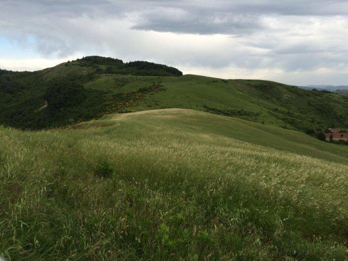 Il sentiero lungo i prati; sullo sfondo: Monte Maggiore